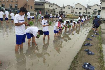1年生田植え実習を行いました。