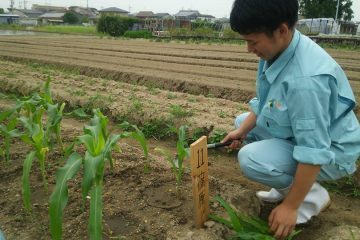はじめての栽培管理 1年生の「農業と環境」