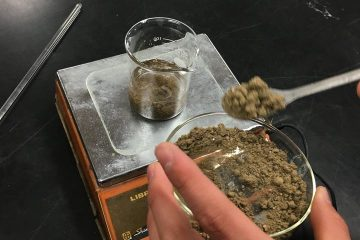 土壌分析に挑戦