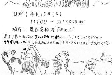 「百年の丘」ふれあい動物イベントの案内4月15日(ふれあい動物専攻)