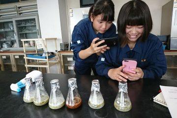 発酵液で植物の伸長成長促進!
