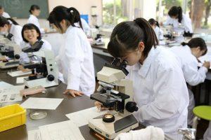 微生物利用専攻 顕微鏡観察