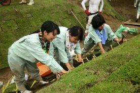 100周年記念事業「農芸高校の校門周辺再生計画」の丘の芝張り
