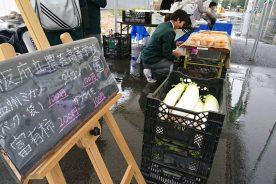 堺市立人権ふれあいセンターにて野菜や果物を生徒が販売