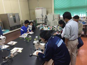 植物バイオテクノロジー体験