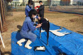 大阪芸術大学の学生とともに正門の車止めの塗装を行いました。