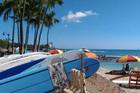 食品加工科、ハワイ研修旅行!