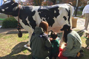 酪農専攻生たちが、中之島公園で開催された「大阪ママの働き方応援フェス!」に参加しました。