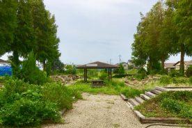 造園専攻「見せる庭」