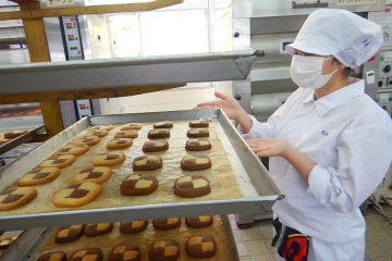 製菓専攻アイスボックスクッキー実習