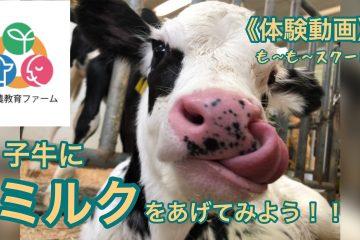 農芸FARM GIRLより 「酪農疑似体験動画」配信開始!!