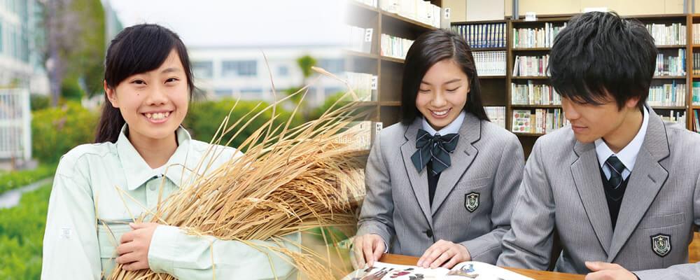 大阪 府立 高校