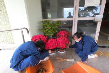 玄関前に初夏の植物を配置しました